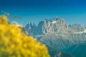 Rosengarten - Der Zauber der Dolomiten